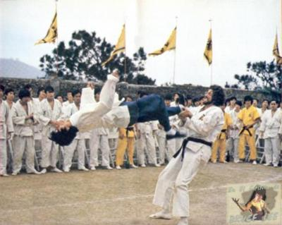 Bruce Lee Flash Kick
