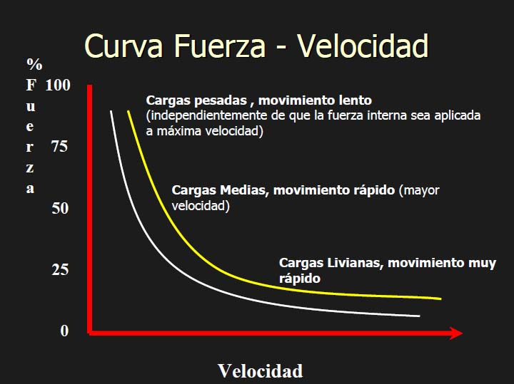 Curva Fuerza-Velocidad
